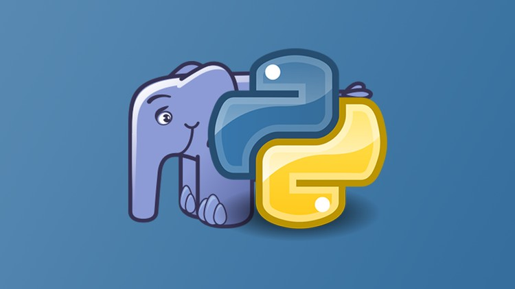 Python and PHP Killer Programming Bundle
