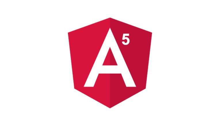 Angular 5 Concept Mastery Course