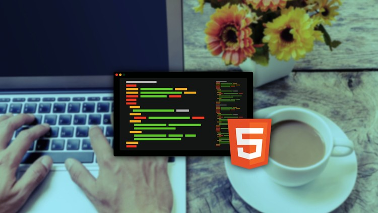 HTML CSS: Essential steps to learn HTML CSS